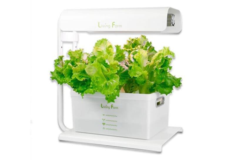 リビングファーム「小型水耕栽培器ココベジiW」1万9500円