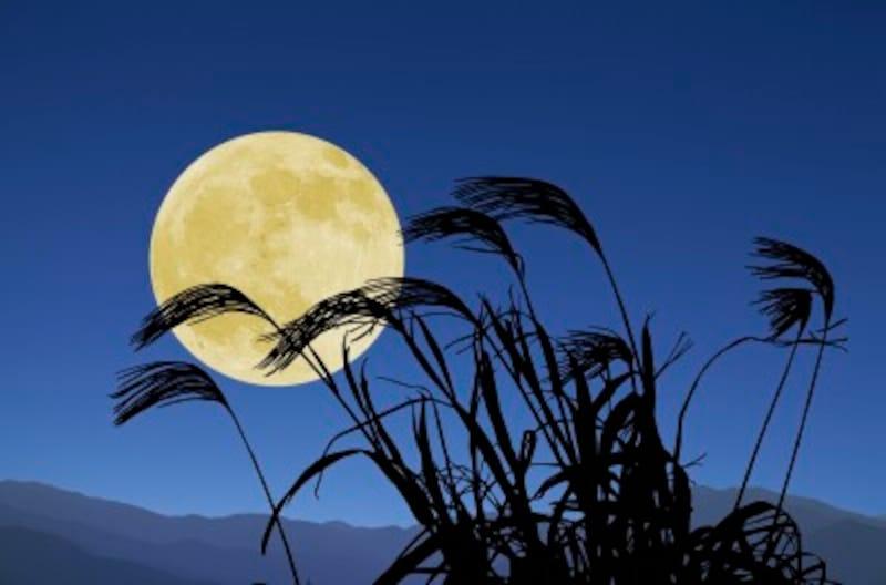 9月の行事・歳時記十五夜お月見中秋の名月
