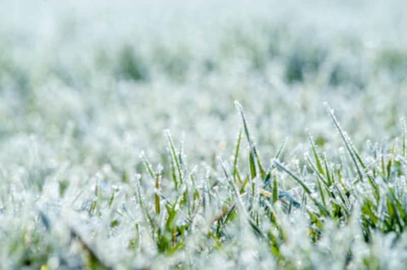 11月の行事・歳時記立冬