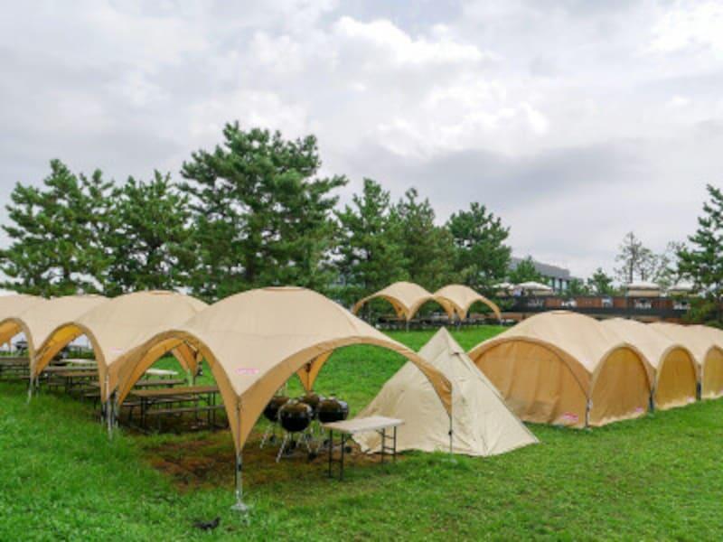 テントを張るなど多目的に楽しめるエリア「ワンダーフィールド」