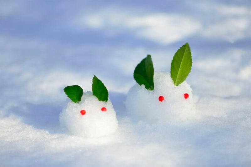 寒中見舞いは季節感が大事