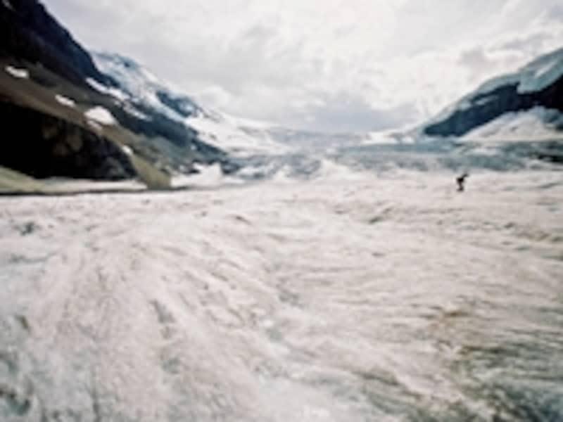 アサバスカ氷河やコロンビア川など、数々の氷河や河川の水源となっているコロンビア大氷原