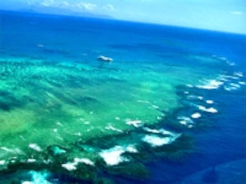 美しいサンゴ礁。あまりに広大な世界遺産の中には、グリーン島、ウィットサンデー島、ヘロン島、ダンク島、フランクランド諸島など無数の名所がある