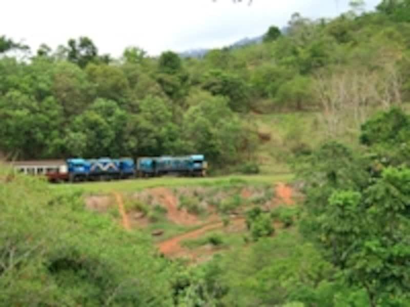 ケアンズとキュランダ村を結ぶキュランダ観光鉄道と、クイーンズランドの熱帯雨林。キュランダ村へは熱帯雨林を空から眺めるスカイレールで訪れることもできる