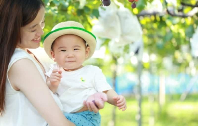 0~2歳の赤ちゃん連れ旅行を成功させるポイントは?