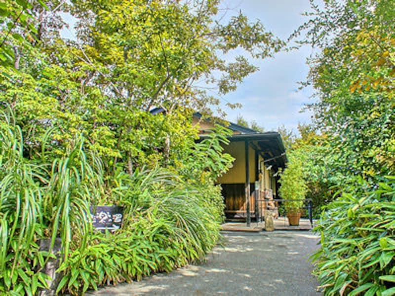 縄文天然温泉「志楽の湯」