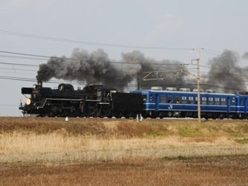 2009年2月、早春の千葉・内房線を走った「SL春さきどり号」(袖ヶ浦付近にて)