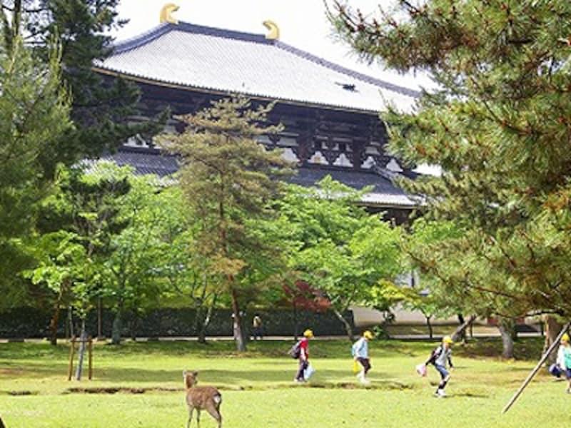 大仏殿に行くと、誰もがその大きさに仰天する