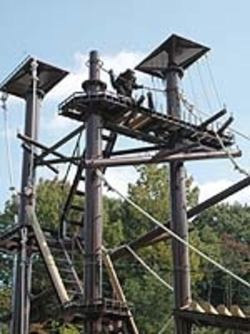 2008年秋に完成したチンパンジータワー