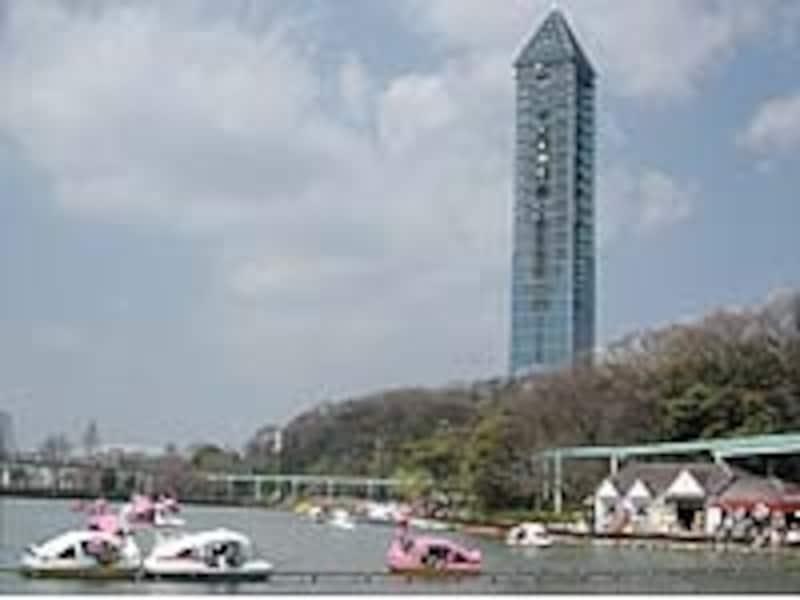 遊園地を併設し、展望タワーやボートなどお楽しみも多彩