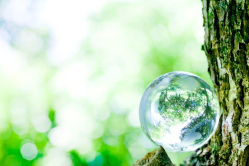 美しい自然と経済活動を両立させるために何が必要だろうか?