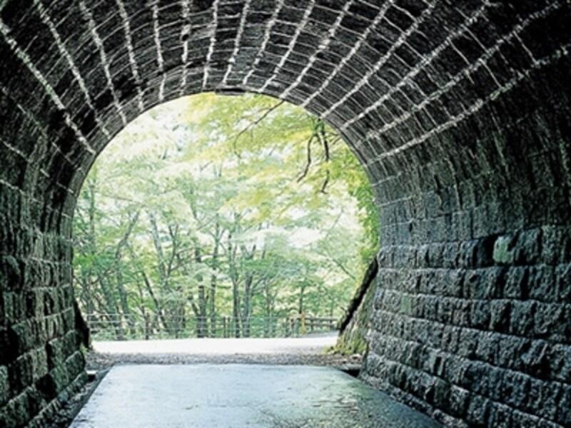 現存する石造りトンネルとしては国内最長の「旧天城トンネル」。数々の名作(文学)の舞台となった