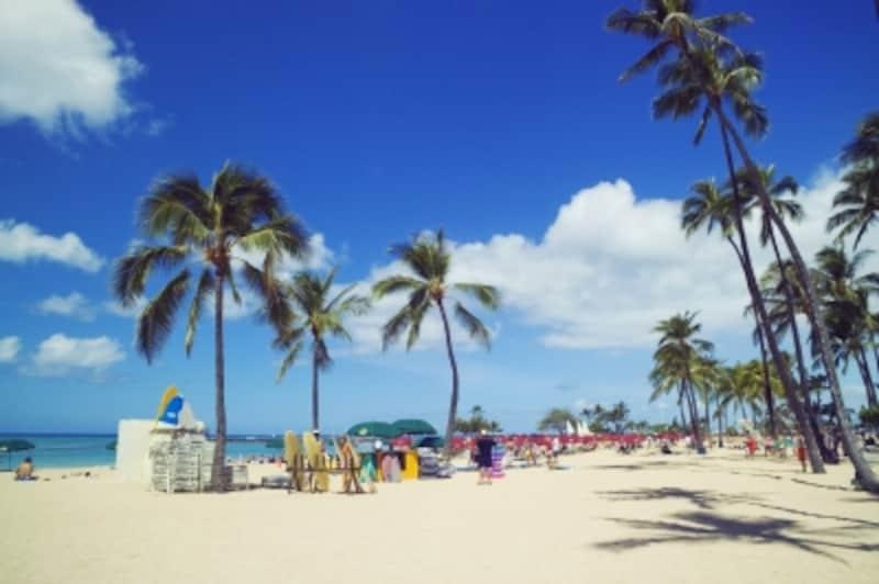 春にベストシーズンを迎えるビーチはどこ?