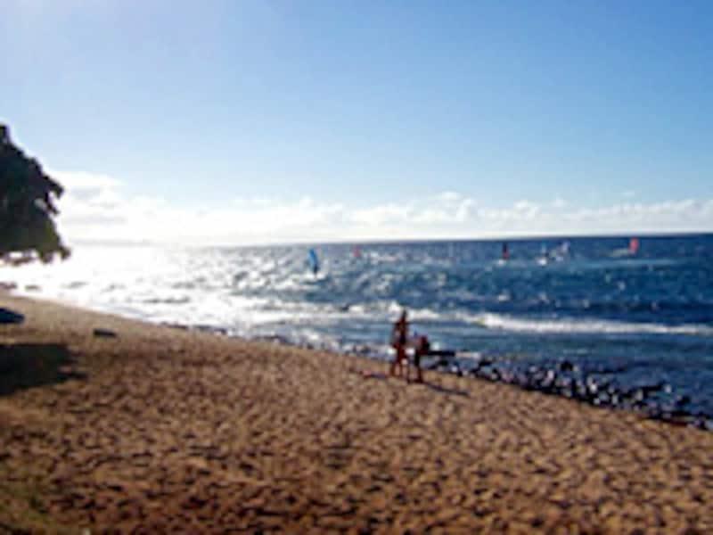 マウイ島ホオキパビーチ