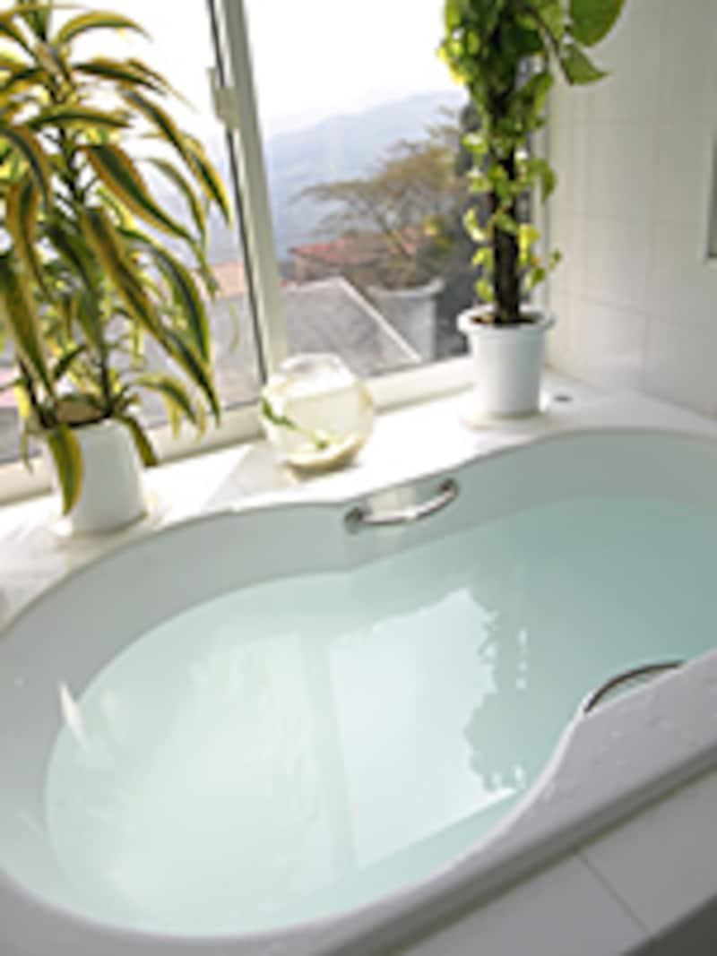 お風呂場はヒトの癒しスポットであると同時に、カビ的にはパラダイス。だからこそヒトのために死守したい快適環境なのであります。