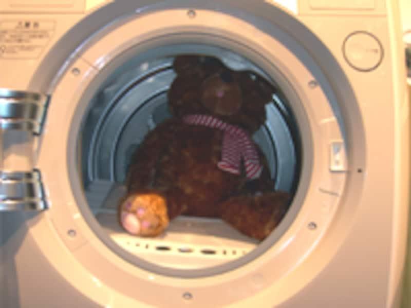 棚乾燥のクマ