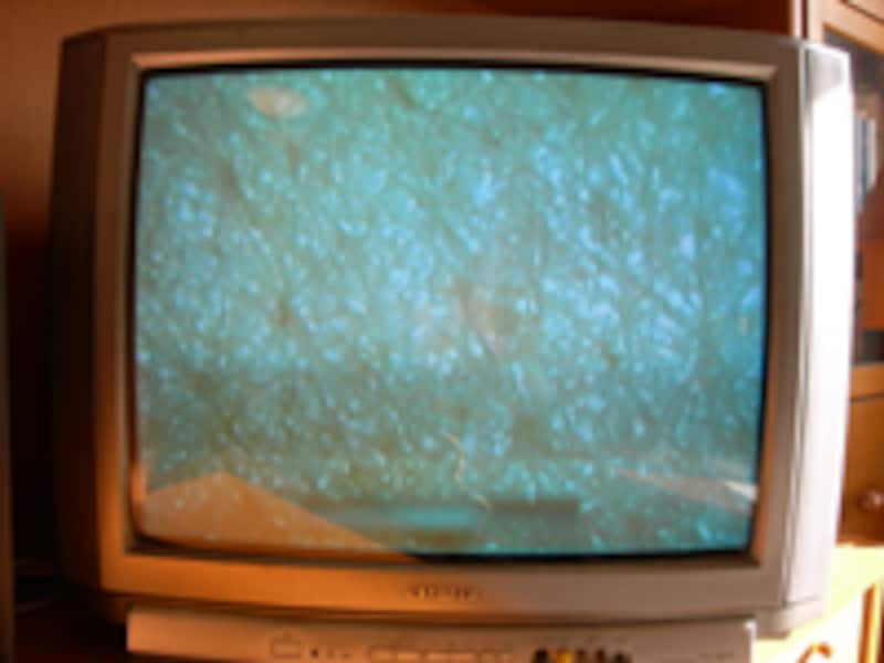 拡大カメラでテレビに映す