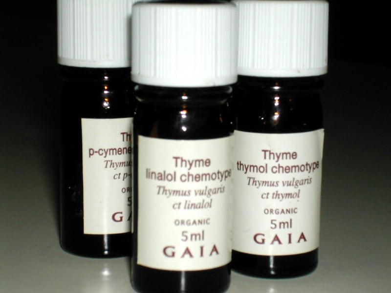thymus8.jpg