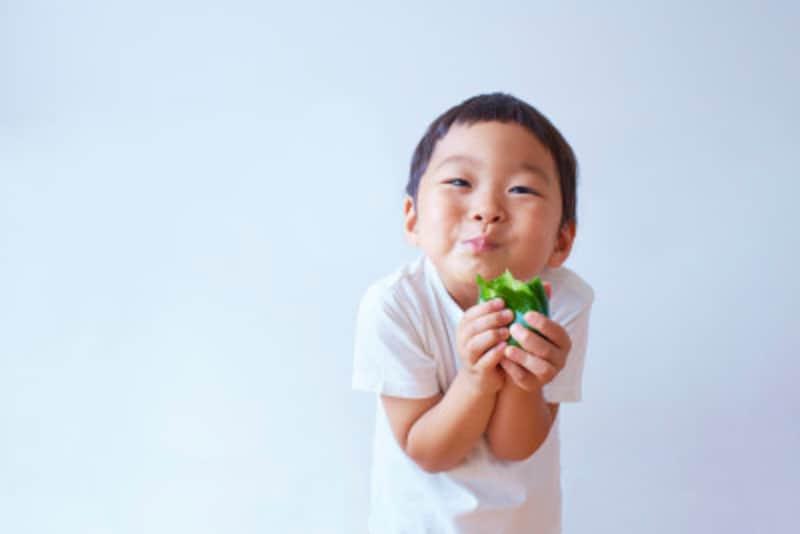 モゴヨ(먹어요)!知っておきたい韓国語の動詞~「食べる」