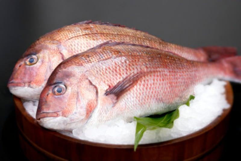 真鯛の下ごしらえ・料理レシピ