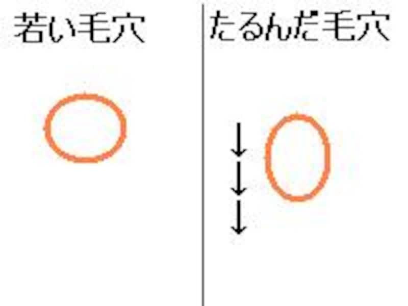 画像の代替テキスト