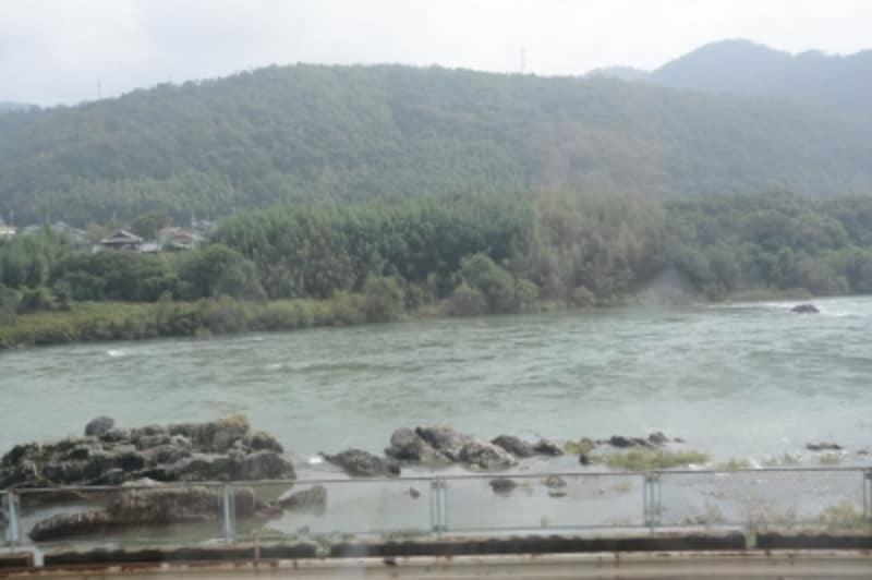 日本ライン