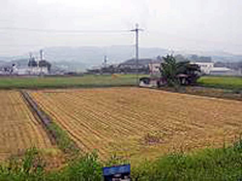 貴志川線の車窓