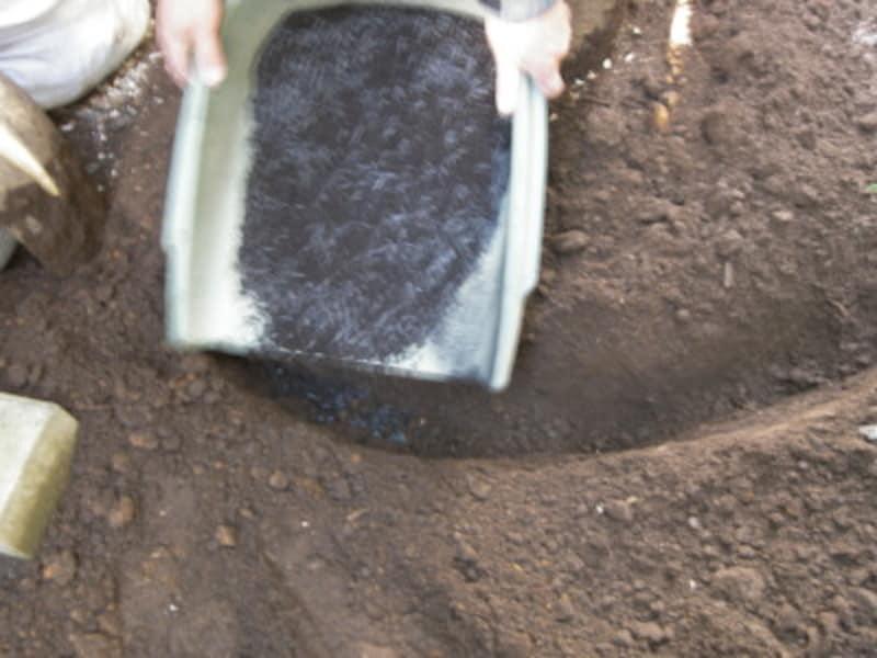 冬こそ施肥と土壌改良を!その理由と作業の仕方を解説