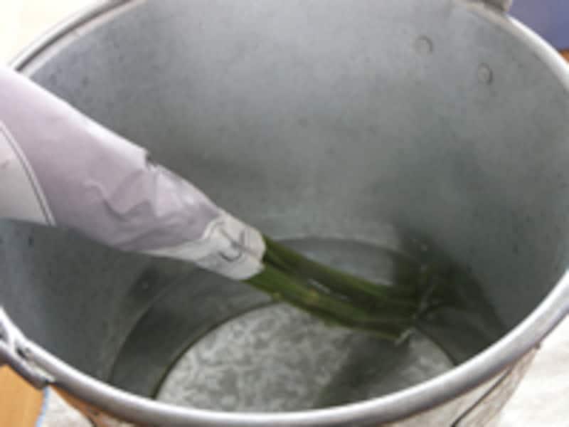 お湯につける