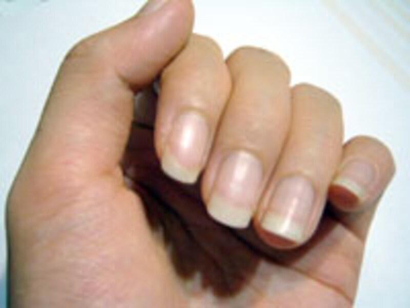 ガイドの爪