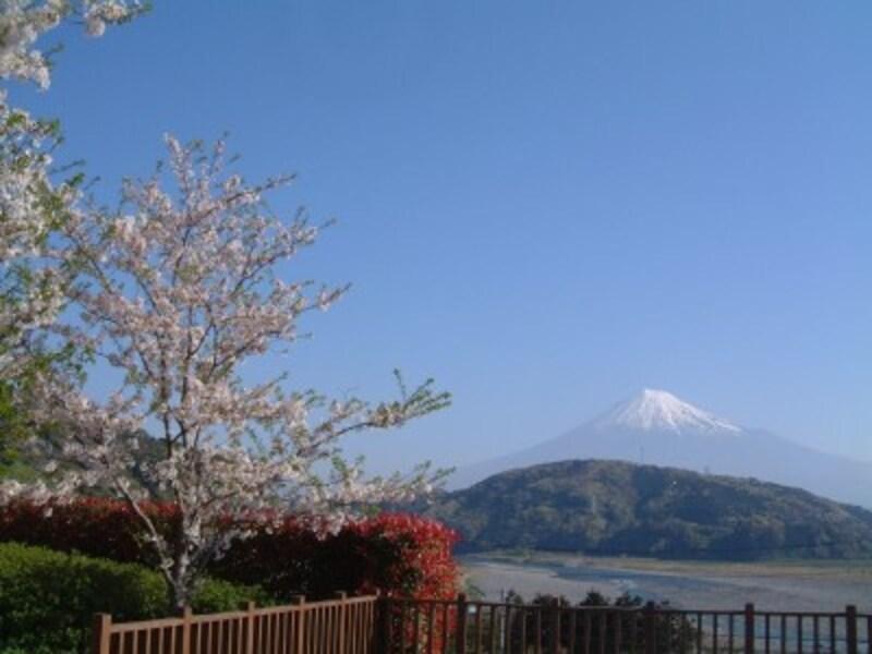 道の駅富士川楽座から望む富士山(2)
