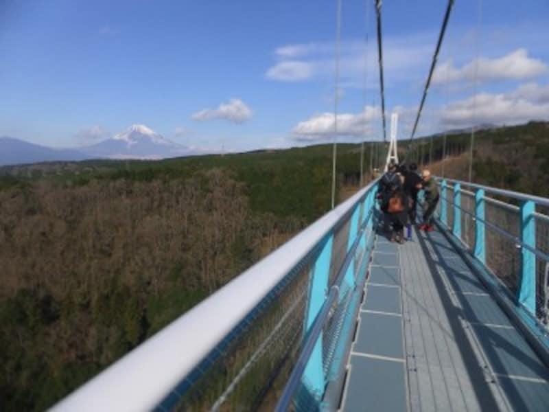 三島スカイウォークから望む富士山(2)
