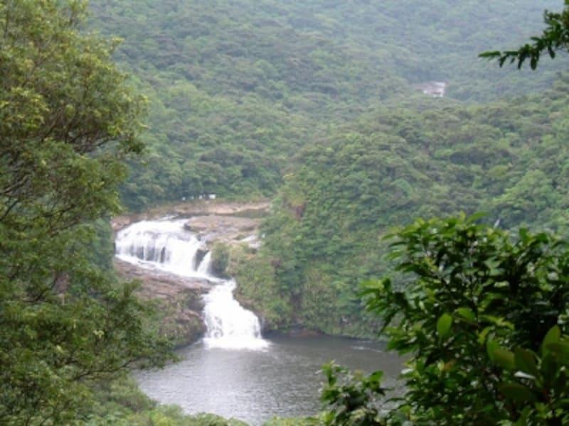 西表島:マリュドゥの滝とカンピレーの滝