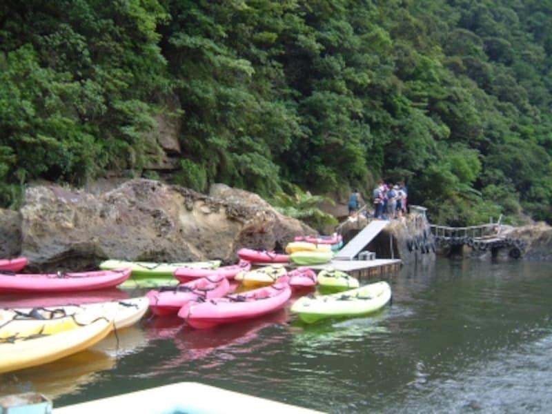 カヌーで浦内川を下るコースも用意されています