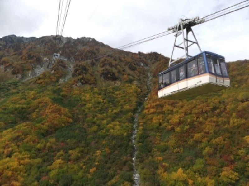 立山ロープウェイから眺める紅葉(1)