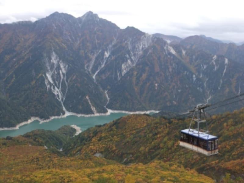 大観峰から眺める紅葉(3)