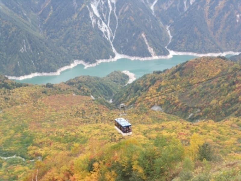 大観峰から眺める紅葉(4)