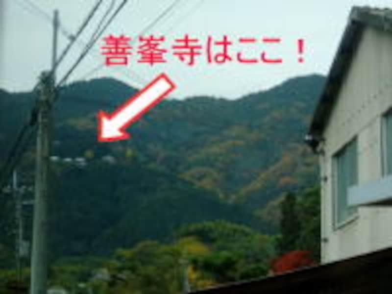 バスの中から善峯寺を見上げる