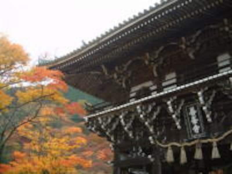 善峯寺(4)/山門と紅葉