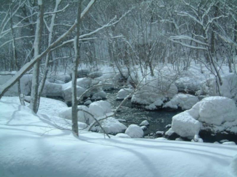 冬の十和田湖・奥入瀬渓流はモノクロームの世界/青森観光情報