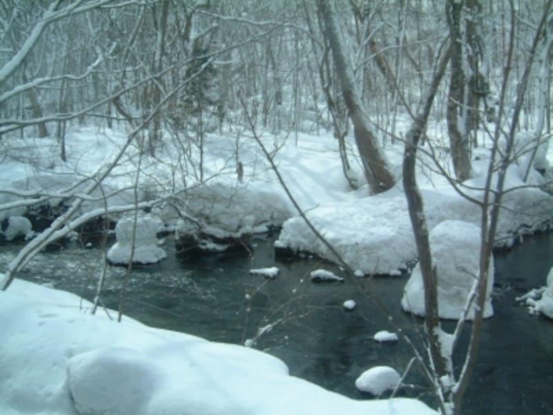 冬の奥入瀬渓流(2)
