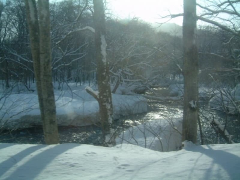 冬の奥入瀬渓流(3)