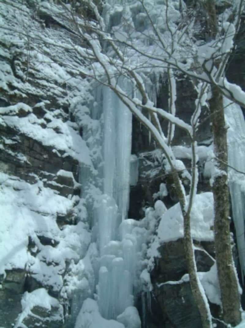 冬の奥入瀬渓流(4)