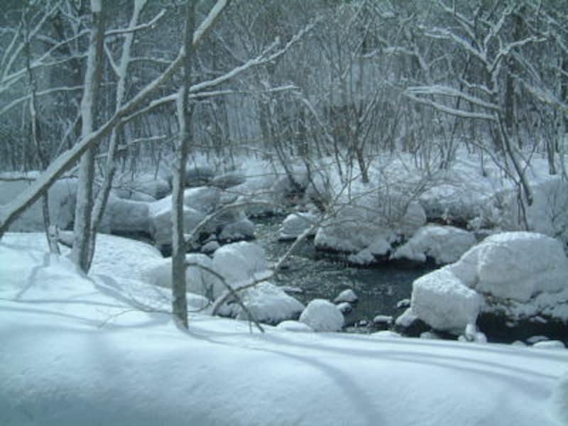 冬の奥入瀬渓流(1)