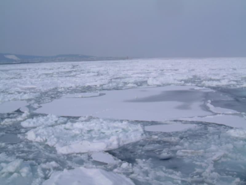 紋別の流氷(3)