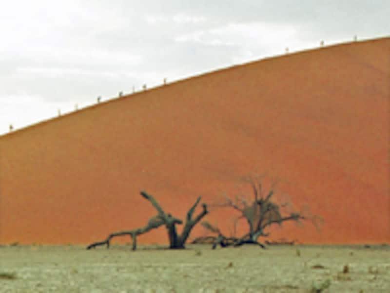 Dune45を登る人々