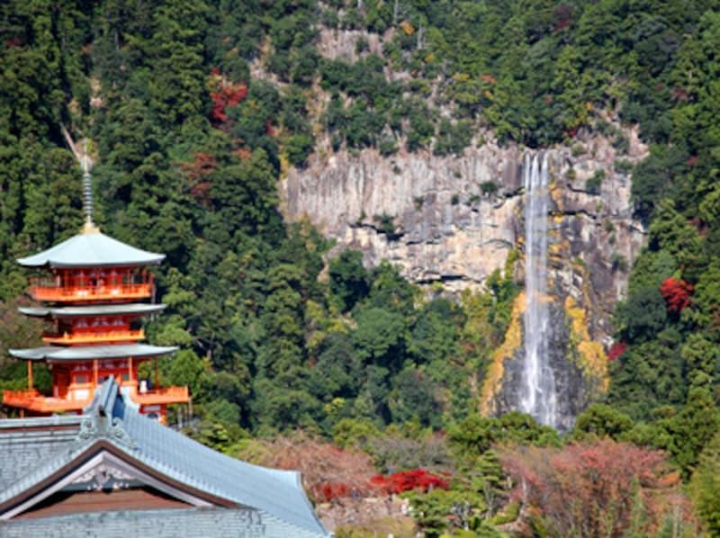 世界遺産豆知識6 文化的景観 [世...