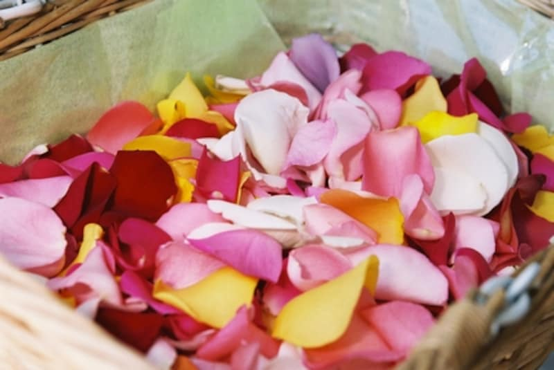 遺灰と一緒にお花を海にまく場合には、自然に還りやすいように花びらだけにすることをおススメします。