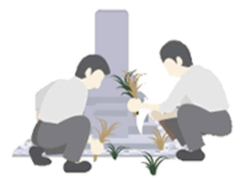 石の継目から雑草が生えてくることもあります。接着が弱いと、そこに土や植物の種が入り込んで芽を出してしまうこともあります