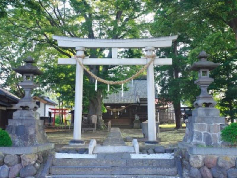 神社では祭祀の対象となるものを御神体と呼びます